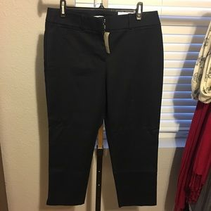 NWT Navy Cropped Pants from LOFT